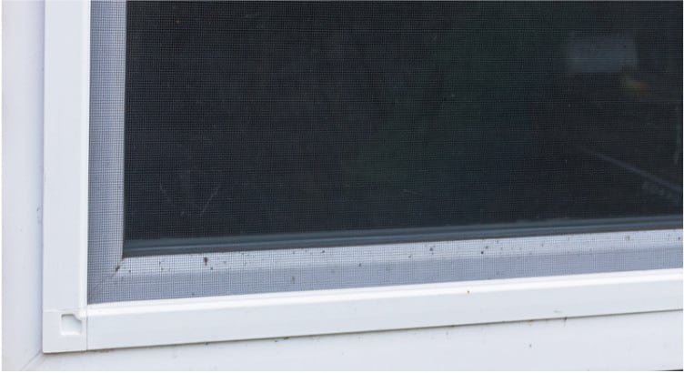 Window screen repair image